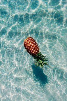 Un bel ananas dans sa piscine. - A beautiful pineapple in your pool.
