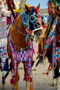 horse regalia
