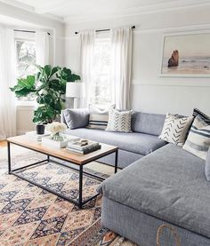 living room - cozy couch, patterned carpet, minimalist table, plants