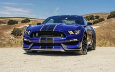 The Mustang muscle Shelby GT350 (2016)