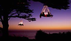 Faire du #camping dans un #arbre ? Oui, oui, c'est possible !