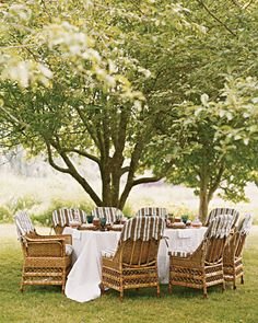 (Yard) Splendor in the Grass:   For a summer dinner, place the picnic table underneath the shade of some trees. A white, full-length tablecloth and striped seat covers will give your table setting a fresh but rustic feel
