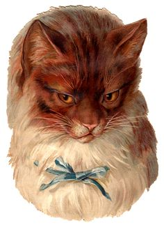 Victorian Graphic – Cat with Blue Bow