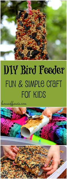 DIY Bird Feeder Fun and Simple Craft for Kids