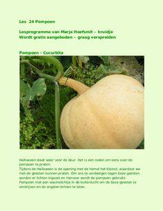 pompoen - les 24 by kruidje les via internet - kruidenkennis via slideshare