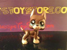 Rare Littlest Pet Shop 817 Great Dane Chocolate/Tan Star Eyes Blue 2007 LPS Dog #Hasbro