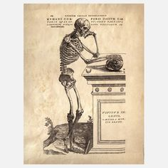 Anatomy Skeleton Print IIIOriginally drawn by Andreas Vesalius, an anatomist, physician and author of one of the most influential books on human anatomy, De Humani Corporis Fabrica, or, On The Fabric Of The Human Body.