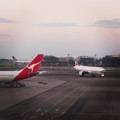 #cathaypacific #boeing #b777 #qantas #airbus #a330 #changiairport