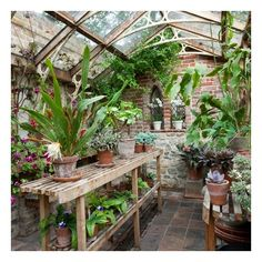 Classic garden greenhouse ❤ liked on Polyvore featuring backgrounds, rooms, garden, house and pictures