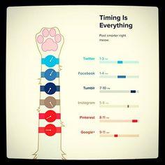 Oggi vi proponiamo un'infografica felina per consigliarvi gli orari migliori per pubblicare! (Fonte http://www.socialmediatoday.com/marketing/sarah-snow/2015-07-30/post-smart-when-not-post-social-media-infographics)  #mercury#infografica #infographic #socialmediamarketing #socialnetwork #socialmediamarketing #social #socialmedia #instasocial #times#post#instainfographic #socialmediamanager#marketing #marketingrelazionale #marketingdigital #work#when#postsmart#instacat#marketingonline…