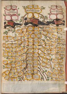 ψ Family Trees ψ diy genealogy & ancestry ideas - Johann Franz Eckher von Kapfing prince-bishop of Freising Genealogy Chart, Family Genealogy, Medieval Manuscript, Illuminated Manuscript, Family Tree Chart, Family Trees, Phylogenetic Tree, Medieval World, Colorful Drawings