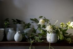 A Fearless Forager Opens a Flower Shop in SF Gardenista