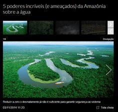 Desmatamento na Amazônia brasileira subiu 467%, alerta ONG . http://exame.abril.com.br/brasil/noticias/desmatamento-na-amazonia-brasileira-subiu-467-alerta-ong-imazon