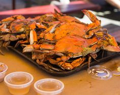 Maryland's Top 12 Crab Houses.