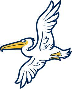 Myrtle Beach Pelicans Alternate Logo (2007) -