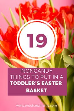 Are you planning your toddlers easter basket? If you don't want to fill your child's Easter Basket with candy, check out these noncandy ideas to put inside of the holiday basket. Here are 19 things that aren't candy you can stuff into the basket. These are cute gifts for toddlers. #easterbasket #easter #toddlers #toddlerlife #basketideas #toddlerideas #lifewithatoddler Easter Egger Chicken, Goodie Basket, Easter Baskets For Toddlers, Holiday Baskets, Mom Birthday Gift, Birthday Bash, Easter Activities, Easter Celebration, Toddler Gifts