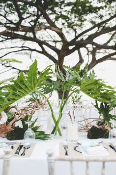 Tropical-themed outdoor wedding decorated with large palm fronds // Keong Wee and Vicky's Tropical Wedding Beneath a Rain Tree