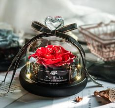 Buy or sell cheapest but quality Eternal Flower Box Glass Cover for Christmas Valentine''s Day Gift Birthday Gift Red Preserved Roses from Marketplace with fastest shipping worldwide. Always change mobile and tablet browsers to desktop to access the site. Preserved Roses, Flower Boxes, Silver Roses, Christmas 2019, Red Flowers, Garden Furniture, Preserves, Valentine Day Gifts, Cake Decorating