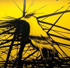 American Goldfinch by Sean Bishop, via Behance