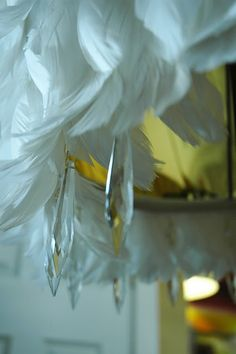 feather chandelier- perfect to glam up any space