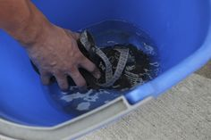 How to Clean Chaco Sandals - Rock/Creek Chronicle
