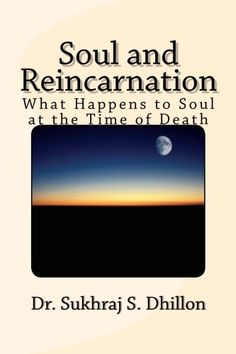 """I have to say the chapter on transmigration of DNA was my favorite, very interesting take on the idea of reincarnation..From review by V. Cano at Amazon. """"Soul and Reincarnation""""  available in digital & print editions"""