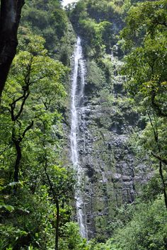 The waterfall at the end of the Pipiwai trail in Haleakala National Park is breathtaking and worth the hike! - Travel Maui
