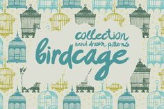 Birdcages by Tanya Akhmett on Creative Market
