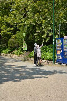 "Nagoya-shi ""Tsurumai Park"""