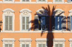 "https://flic.kr/p/95Fbt8 | The palm | Vedi tutte le mie foto - View all my photos Vedi il mio set ""Roma"" - View my ""Roma"" set"