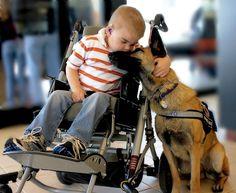 Lucas Hembree e o seu cão-guia, Juno, compartilham um momento. Amor entre ser humano e animal.