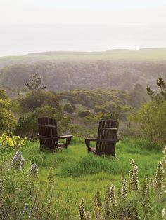 Two rustic chairs take in the view of this lush garden...