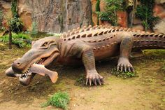 Scary Extinct/ Sarcosuchus- an extinct genus and distant relative of the crocodile that lived 112 million yrs. ago...