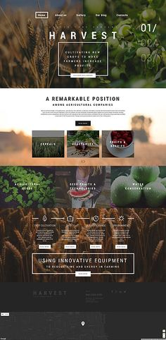 Harvest WordPress Theme Harvest is a ready-made Agriculture WP Theme that can gi. - Harvest WordPress Theme Harvest is a ready-made Agriculture WP Theme that can give you an opportuni - Web Design Trends, Site Web Design, Best Website Design, Design Sites, Ios App Design, Graphisches Design, Website Design Layout, Web Layout, Layout Design