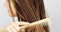 Hidratação caseira e dicas para cabelos oleosos