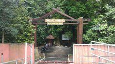 Kuala Lumpur :: Bukit Nanas Forest Reserve