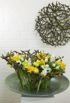 Ranunculus, Hyacinthus, Narcissus, Fritillaria, Tulipa, Anemona