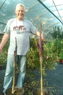 Boro ima arboretum na deset hektara