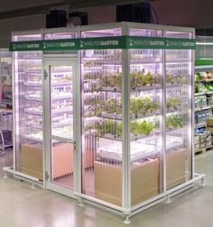 Taking farm-to-table approaches to new heights, a company in Berlin is putting small vertical farms directly inside of grocery stores to provide fresh produce and eliminate transportation costs. Aquaponics System, Aquaponics Diy, Herb Garden, Indoor Garden, Agriculture Verticale, Micro Farm, Supermarket, Vertical Farming, Veggies