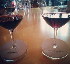 Cata de vinos en #fincaresalso Bodegas Emilio Moro. #MontillaMoriles visita #RiberaDelDuero #winetasting #winelover