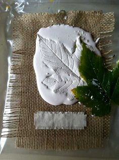 Leaf removed from plaster showing imprint Art For Kids, Crafts For Kids, Diy Crafts, Concrete Art, Cement, Plaster Of Paris, Fall Art Projects, Plaster Art, Autumn Activities For Kids