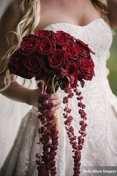 Velvety roses & amaranthys bouquet (Flowers by Lee Forrest Design, photo by: Bella Allure Imagery)