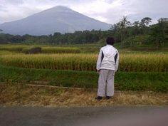 Twitter / iDiharjo: Sejenak hirup hawa segar di sawah desa cibeureum, tadi pagi... Gunung Ciremai nun jauh disana. | #pulkam5 | @pulkam pic.twitter.com/ni0leFIeOM