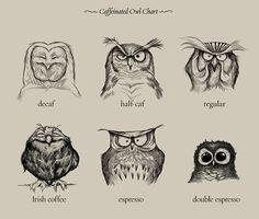 owl caffination chart