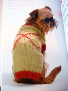 Posh Pooches 12 Knitting Patterns For The Well-Dressed Dog by NeedANeedle on Etsy, $7.75