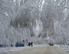 ... - Pinned by Mak Khalaf ... Nature russiawinterзимаснег by yact-viktor