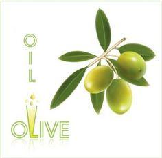 Olive oil vector labels