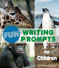 When faced with a blank paper, many kids have a blank mind to match. These fun writing prompts for children may be all they need to inspire creative writing!