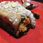 Amish Friendship Bread Coconut Amaretto Brownies