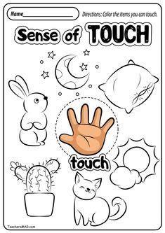 Five Senses Preschool, Preschool Fine Motor Skills, Senses Activities, Kindergarten Learning, Toddler Learning Activities, Preschool Science, Kindergarten Worksheets, Five Senses Worksheet, Cute Powerpoint Templates